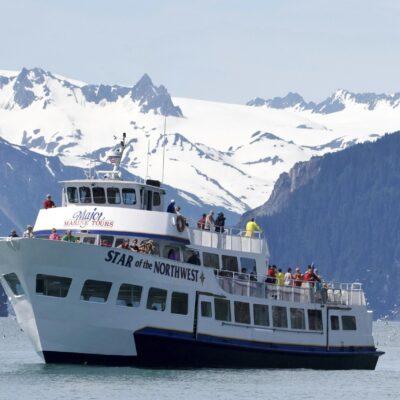 5 Hour Kenai Fjords Wildlife Cruise
