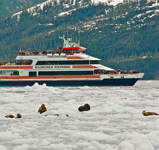 Phillips Cruises
